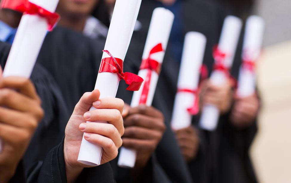 Закачать диплом бакалавр новый образец