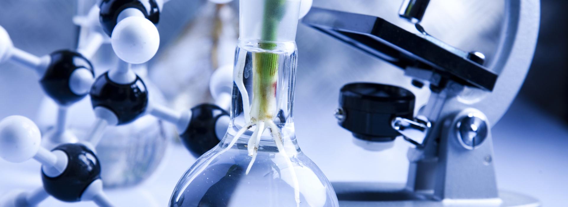 Лаборатория мониторинга результатов научно-исследовательских работ ипроектов