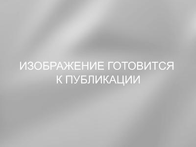 Васенкова Маргарита Анатольевна