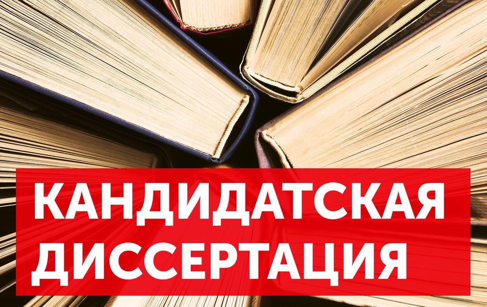 Диссертация Соколовой Е.Б.