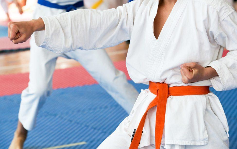 Мастер-классы в Школе боевых искусств МГПУ