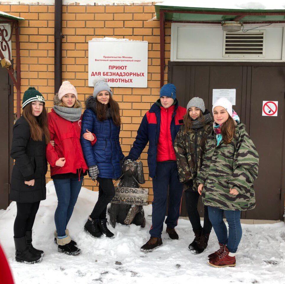 Волонтерский выезд студентов вприют для животных