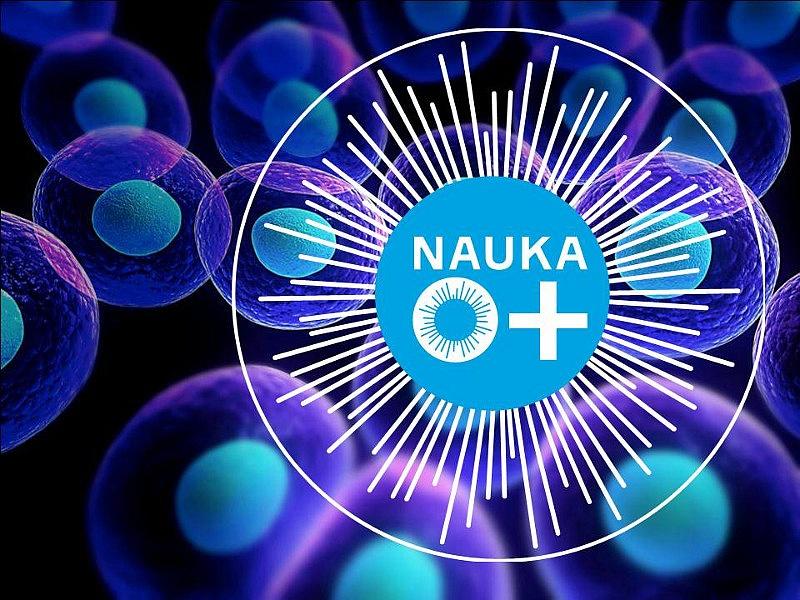 Фестиваль науки «NAUKA 0+»