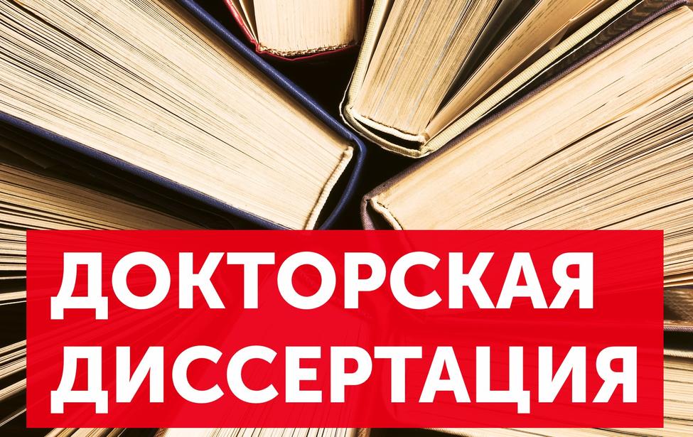 Диссертация Склизковой А.П.