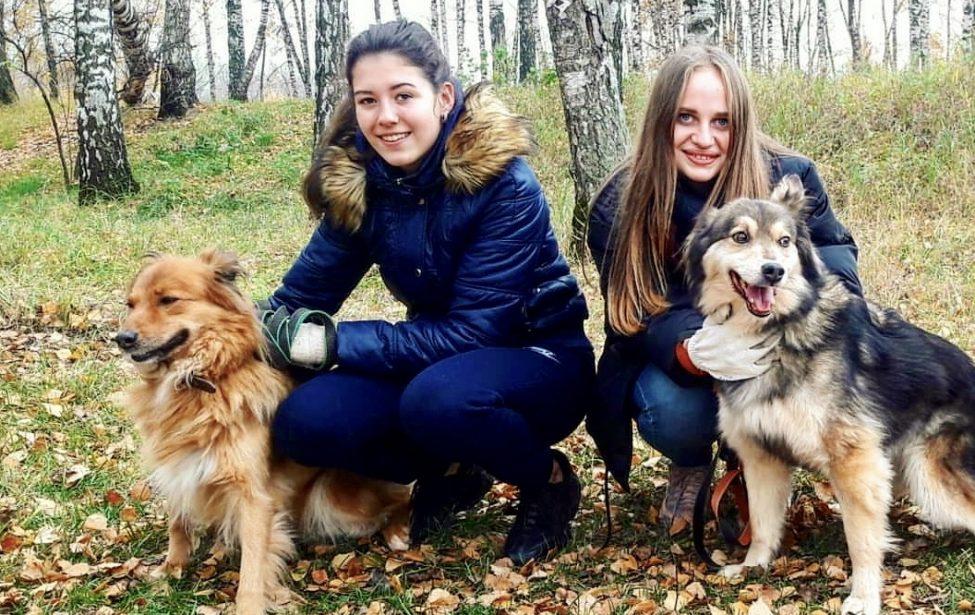 Студенты помогают приюту для животных «Некрасовка»
