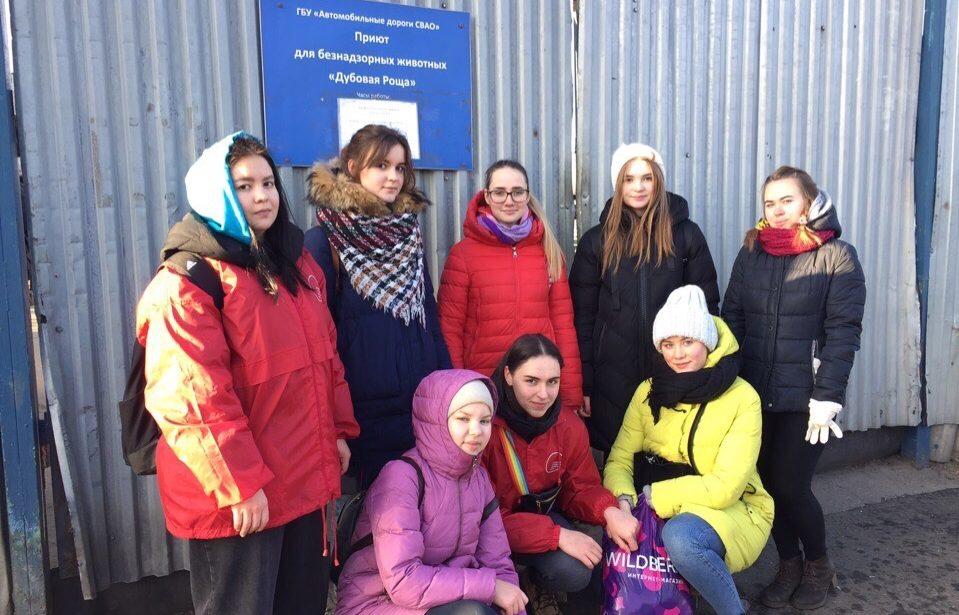 Волонтеры ИЦО оказали помощь приюту для животных