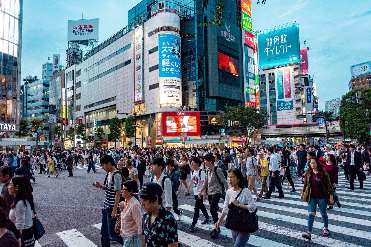 Стажировка в Японии