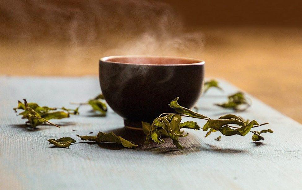 Студенты ИИЯ продолжают знакомство с чайной культурой Китая