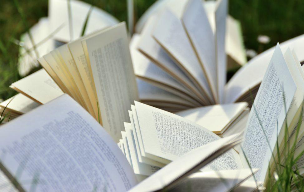 Как читать между строк? Завершился онлайн-курс Ирины Мурзак